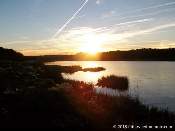 Sun going down over Mullet Pond, Huntington Beach State Park, Murrells Inlet, South Carolina