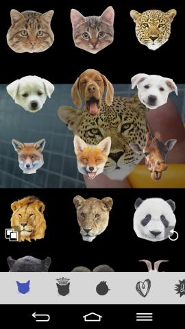 Aplicación de fotomontaje Animal Face.
