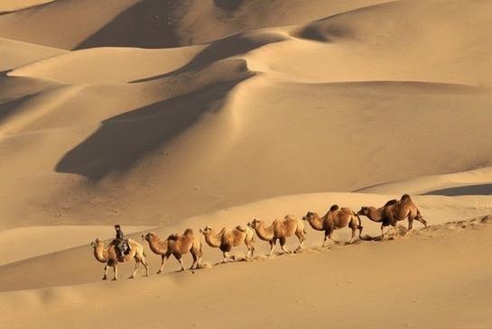 Misteri Ratusan Tasik Muncul di Gurun Padang Pasir di China