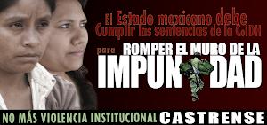CAMPAÑA CONTRA LA IMPUNIDAD