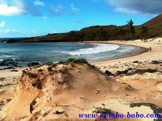 Playa de Anakena que tiene cerca Ahu Nau Nau con siete moais en Isla de Pascua (Chile).