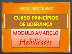 CURSO PRINCÍPIOS DE LIDERANÇA HABILIDADES