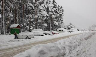 Coches aparcados cubiertos de nieve