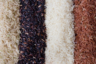 Arroz - sementes, variedades