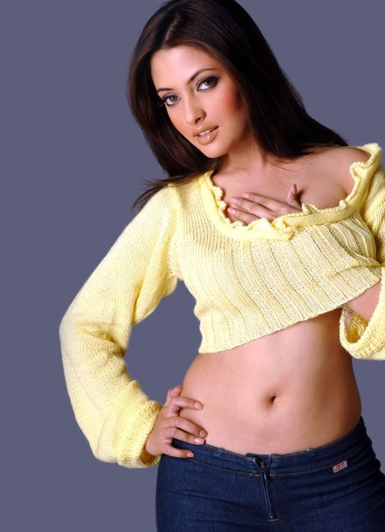 Bollywood Riya Sen Hot Bikini Photo Gallery