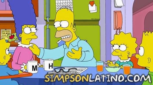 Los Simpson 25x22