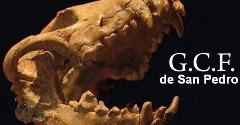 GRUPO CONSERVACIONISTA DE FÓSILES            FOSILES