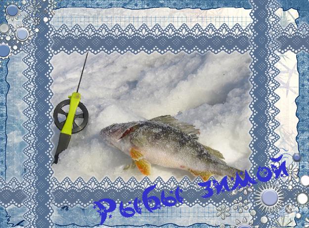 смотреть зимнюю рыбалку на щуку