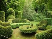 Muito além do jardim