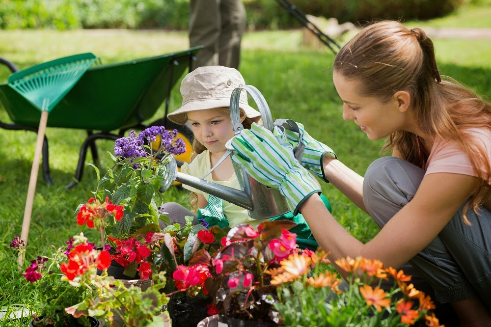 Low Maintenance Perennials for Your Garden