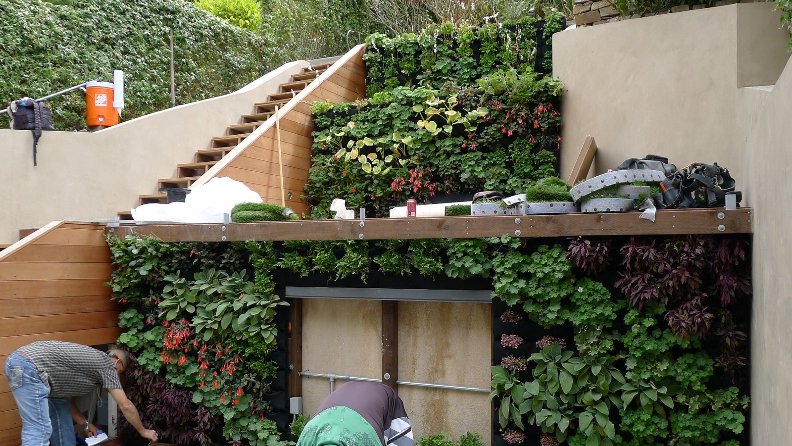 Plants on walls vertical garden systems terraced vertical for Home vertical garden