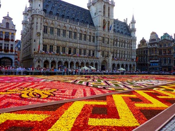 Bruksela Kwiaty 2012