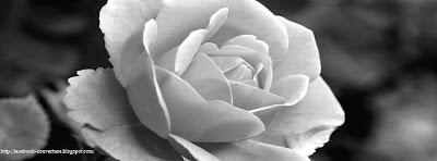 Couverture facebook rose noir et blanc