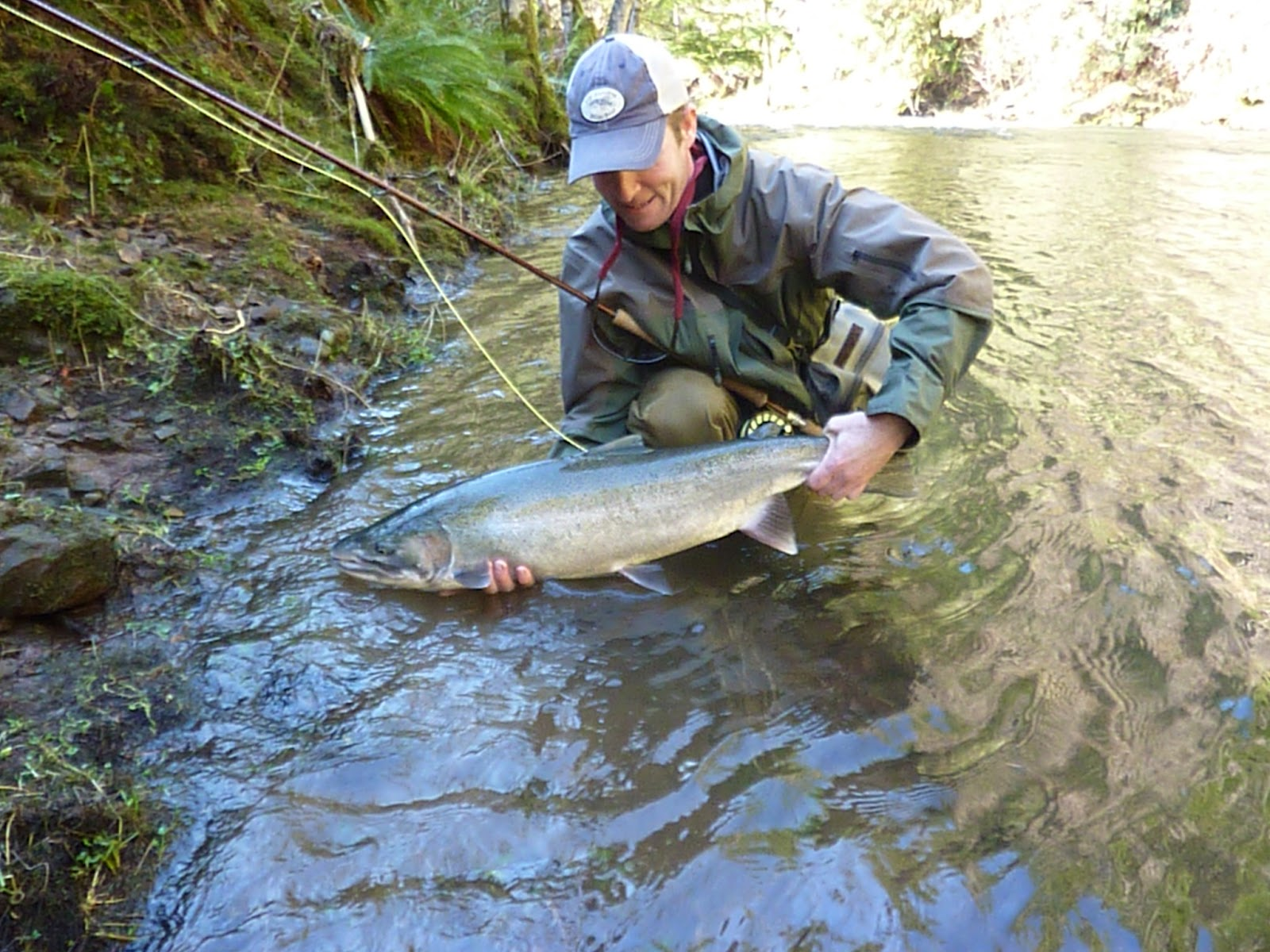 Brian marz 39 s fly fishing oregon blog this winter for Oregon steelhead fishing
