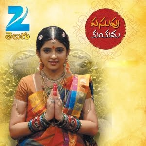 About Pasupu Kunkuma TV Serial Photos