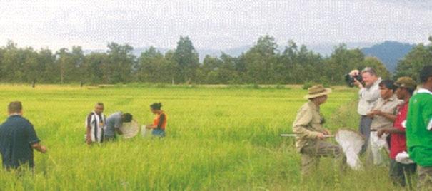 Hatutan Mendalami Permasalahan Sektor Pertanian Di Timor Leste