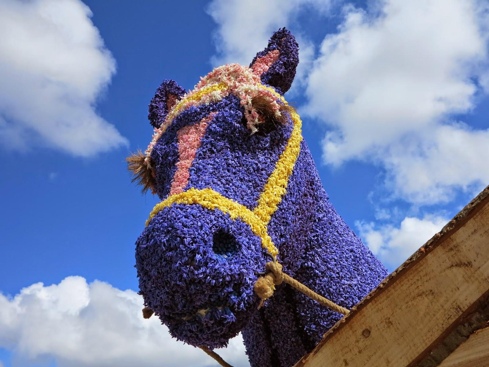 Hyacinth Horse