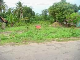 Kiên Giang bán đất thổ cư đường Quang Trung giá rẻ