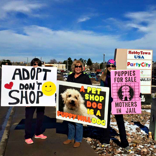 puppy mills adoption advocacy