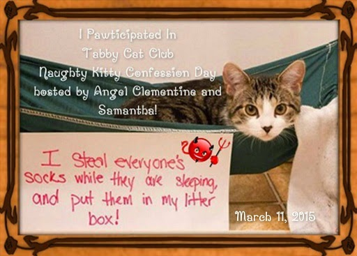 Naughty Kitty Clementine At TCC