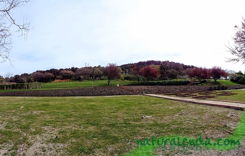 parterres de los jardines de Petra Kelly