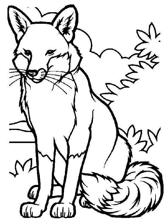 fox coloring pages free printable - photo#1