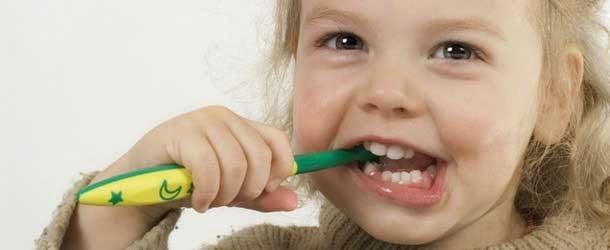 Gül Hastalığı İçin Bitkisel Çözüm
