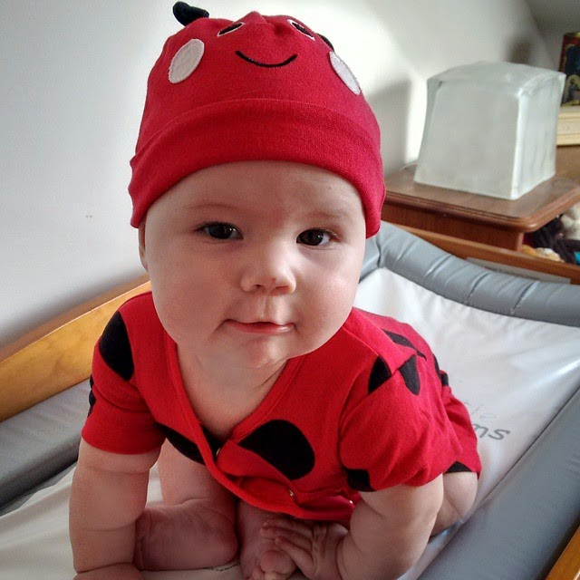 ladybird outfit