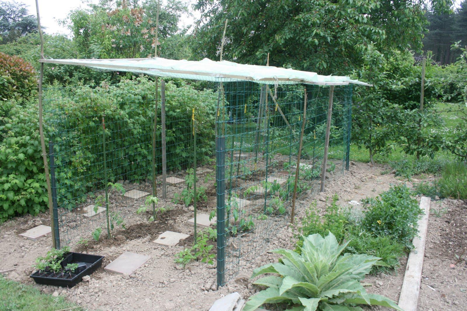 Garden us les tomates - Comment fabriquer toit pour tomates ...