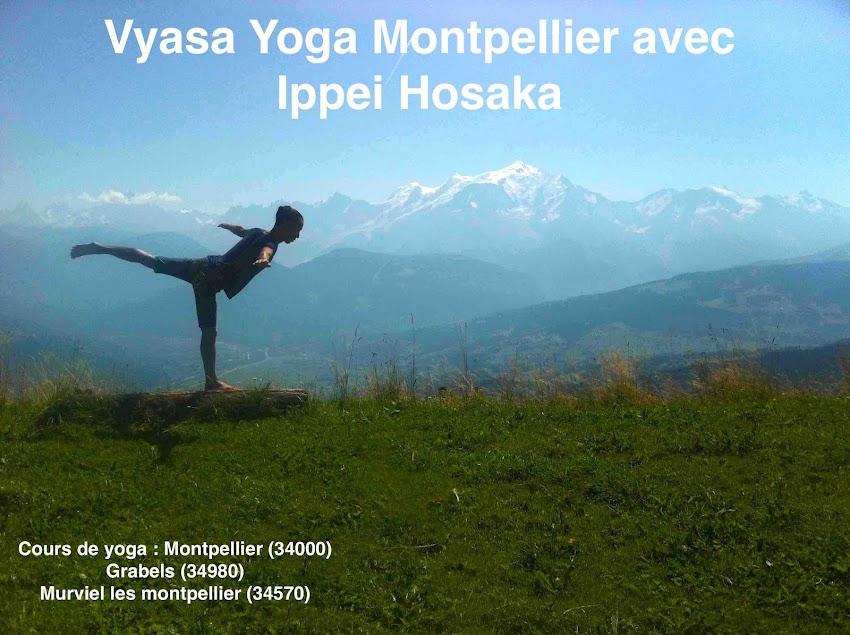 Vyasa Yoga Montpellier avec Ippei Hosaka