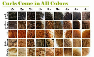 Natural Hair Types Chart
