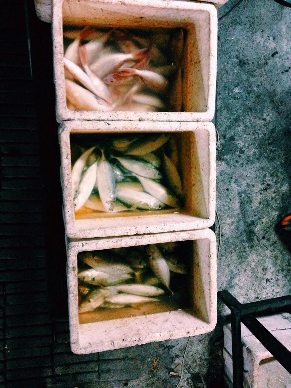 Tempat makan sedap di Kuala Terengganu Selera Dapur Arang