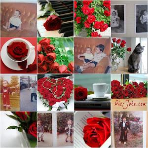 Mis niños llenos de rosas