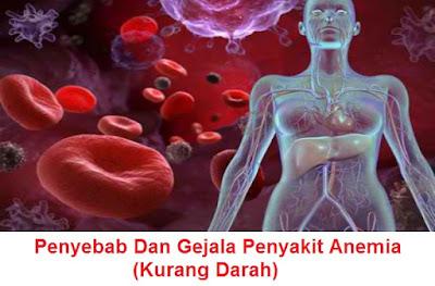 jenis, penyebab, tanda-tanda dan gejala penyakit anemia - kurang darah