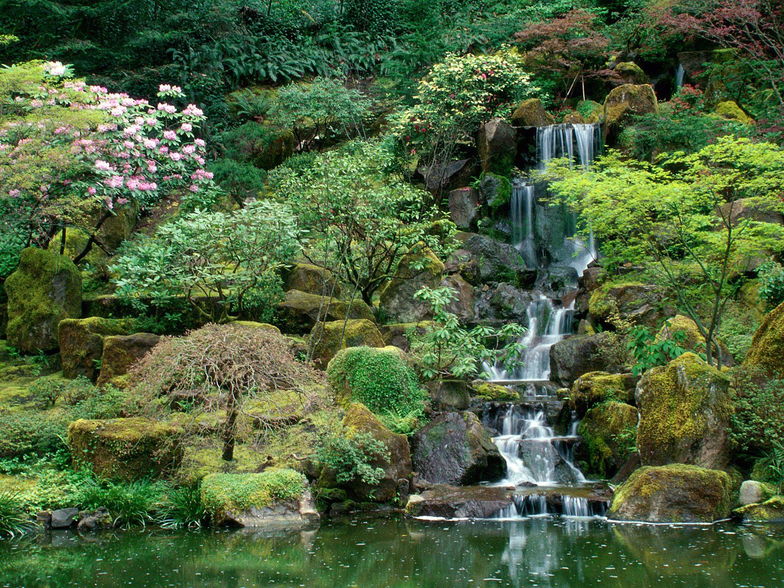 Matin lumineux jardin japonais de portland usa for Jardin japonais cholet
