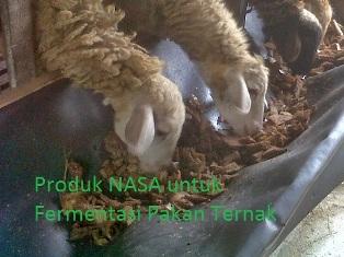 Produk Nasa untuk Fermentasi Pakan Ternak