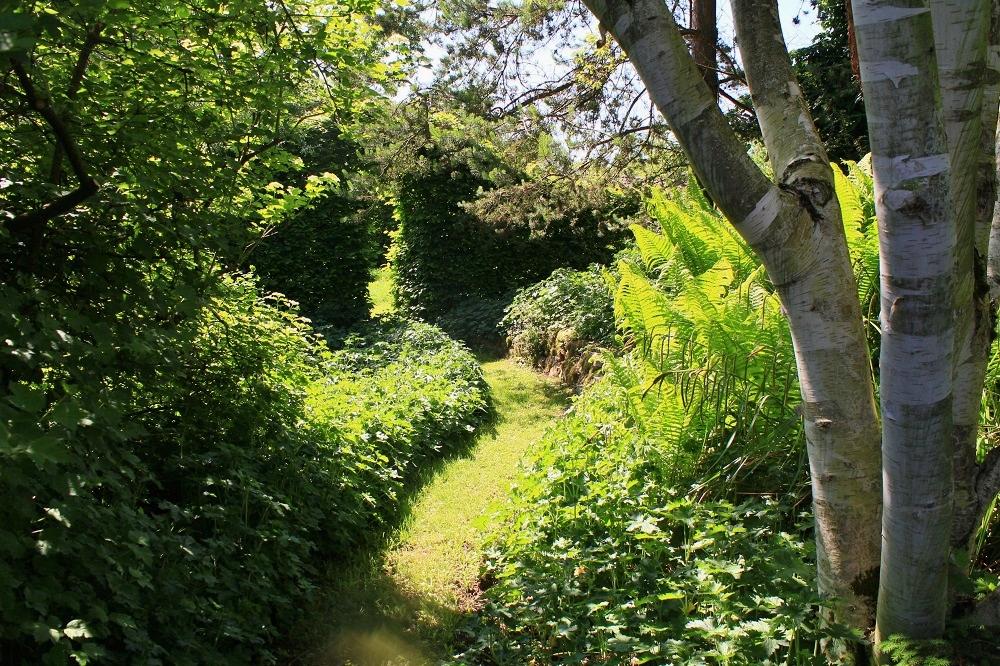 Le jardin de brigitte alsace petit tour en mai for Jardin mai 2015