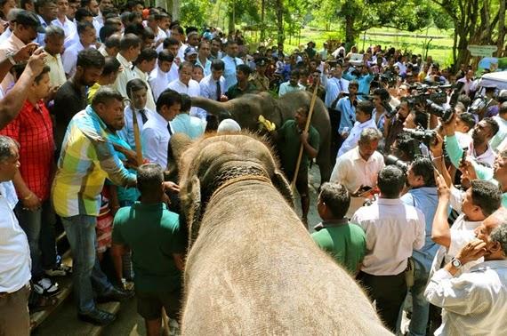 Sri Lanka's first Open Air Zoo in Pinnawala