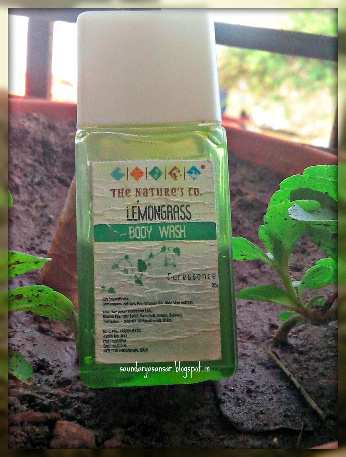 The Natures Co Lemongrass Body Wash Review