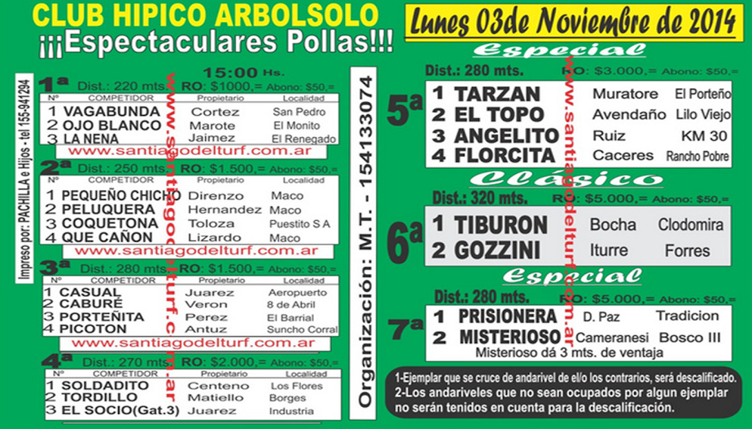 03-11-14-ARBOL SOLO-S.E.
