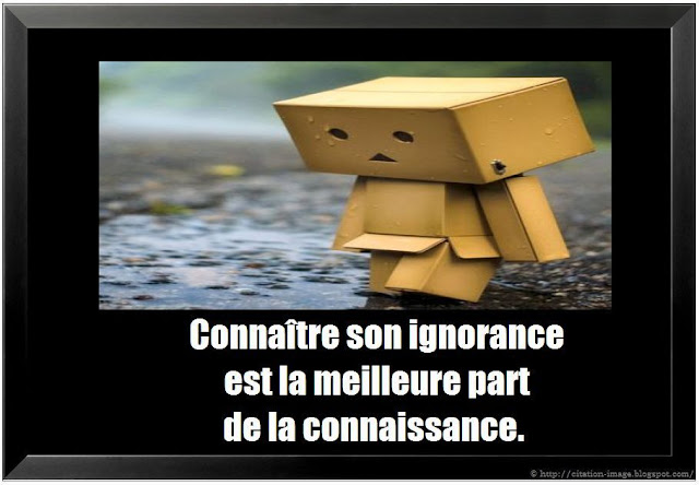 Citation ignorance en image