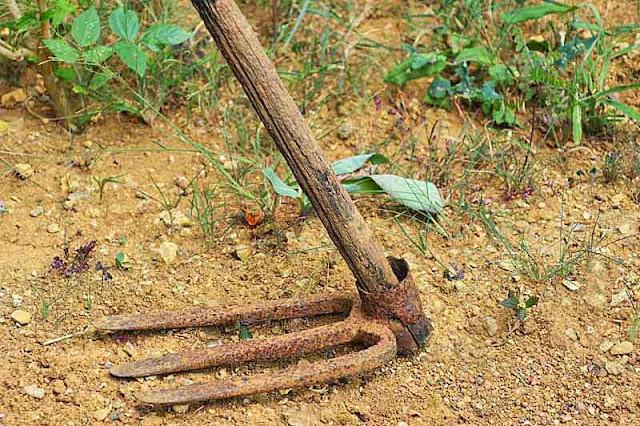 farm tool, garden