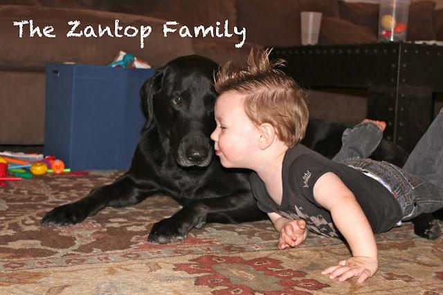 The Zantops