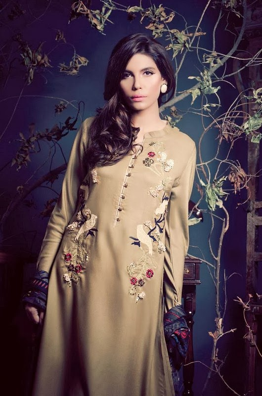 2014 Pakistani Winter Dresses for Girls