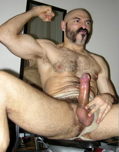 gay peludo safado