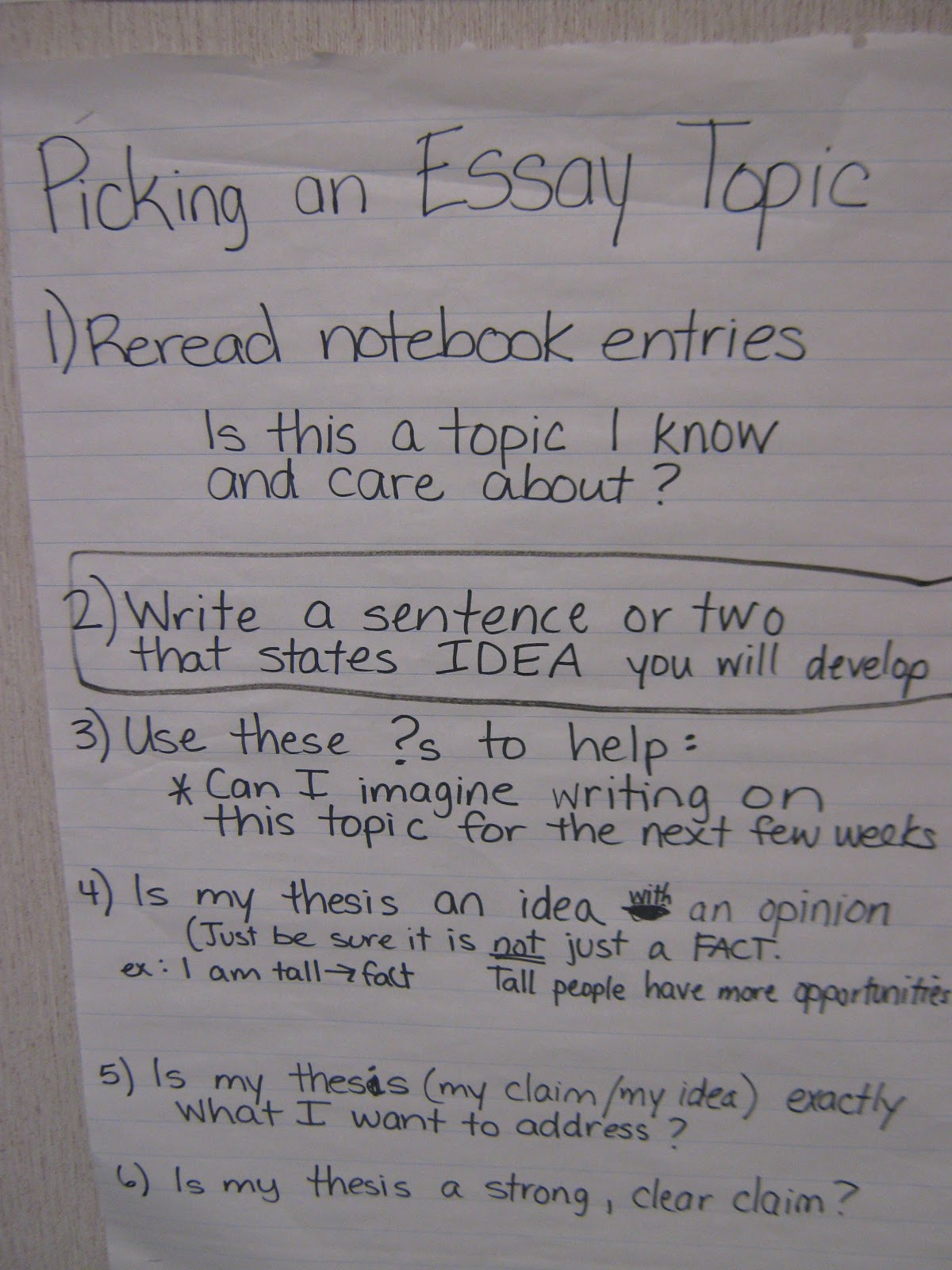 fun w reading and writing essay writing unit th graders essay writing unit 5th graders