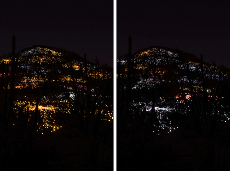 Bruce Munro, Sonoran Light, Desert Botanical Gardens, Field of Light