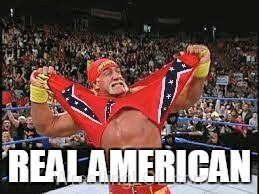 hogan confederate american, hogan and confederate flag, hogan real american