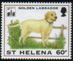 1994年セントヘレナ島 ラブラドール・レトリーバーの切手