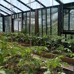 Telas para cuidar sus cultivos